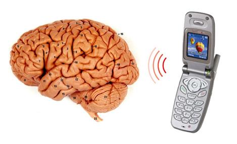 cell phone brain cancer