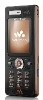 Sony Ericsson W888