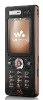 Sony Ericsson W888